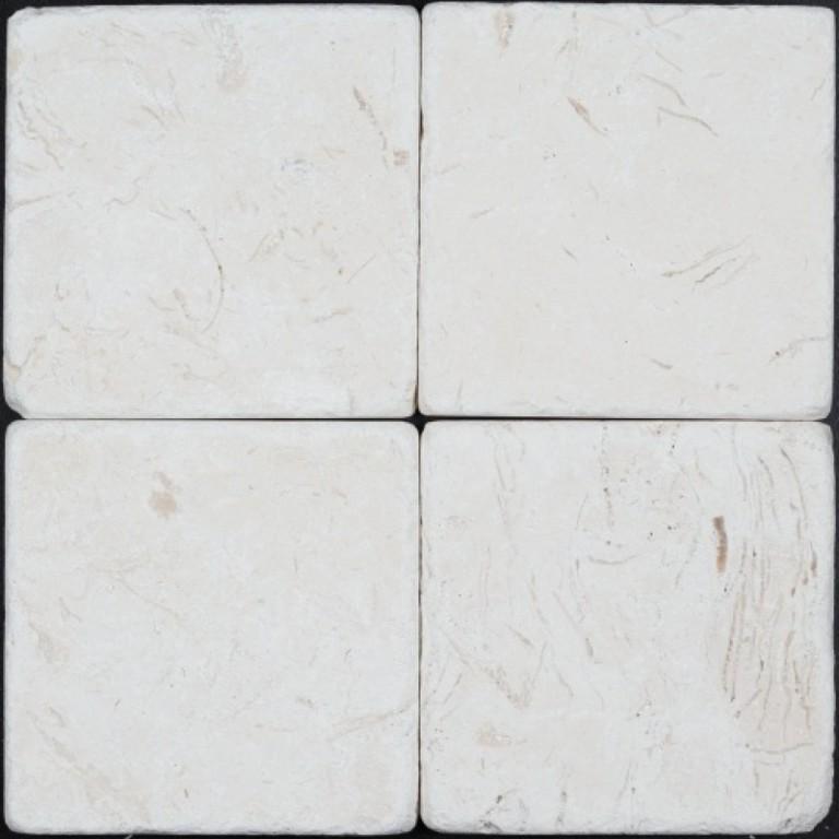 Tarmak-Usa-Stone-Tumbled-Corinthian-Fossil-Tumbled